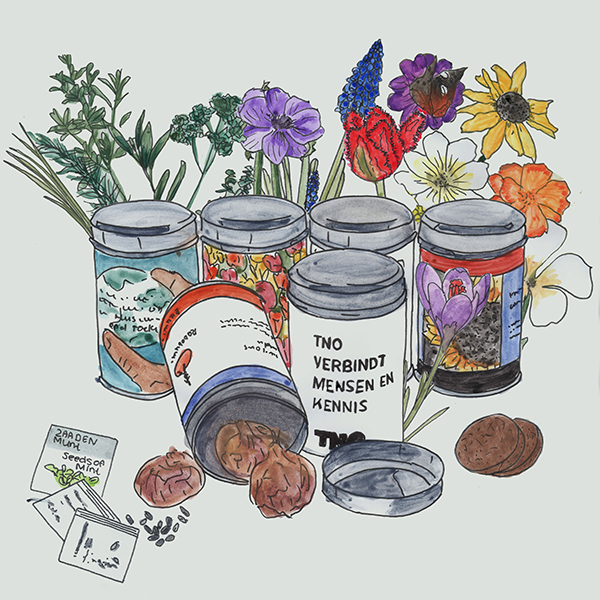 round cans with flower bulbs or seeds