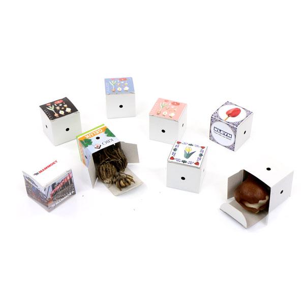 Mini flower bulb box-4597