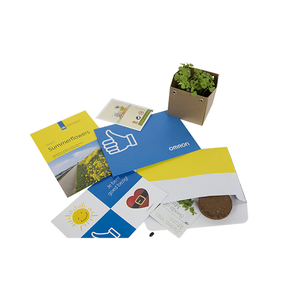 envelope letterbox