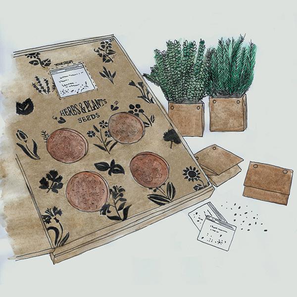 herb grow kit letterbox