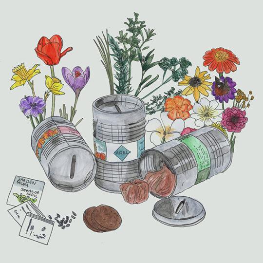 piggy bank oil barrel with flower bulbs