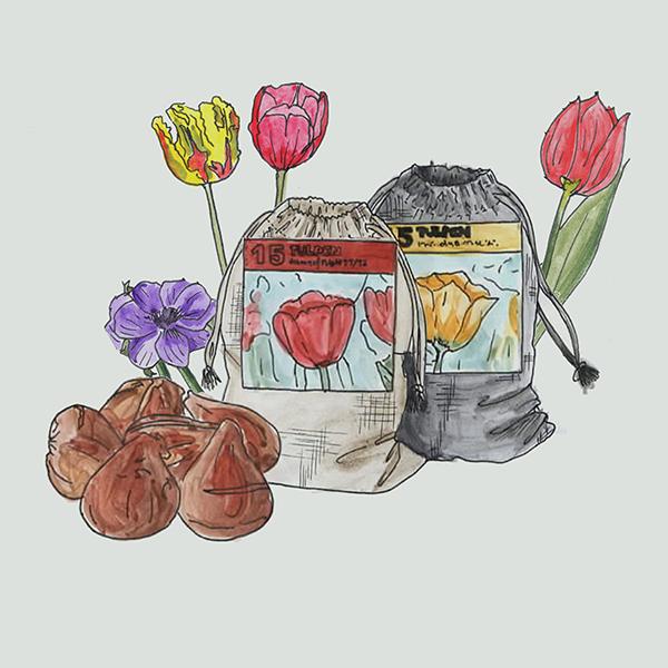 linnen zakjes small met bloembollen